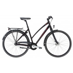 Raleigh Sussex Dame Nexus 7g